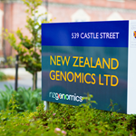 signs dunedin brand identity signwriters corporate identity thumbnail
