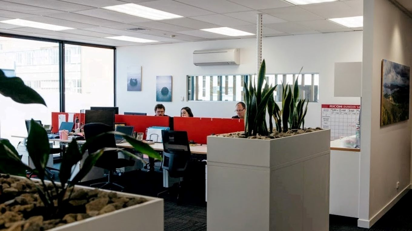 commercial interior design dunedin office fit out