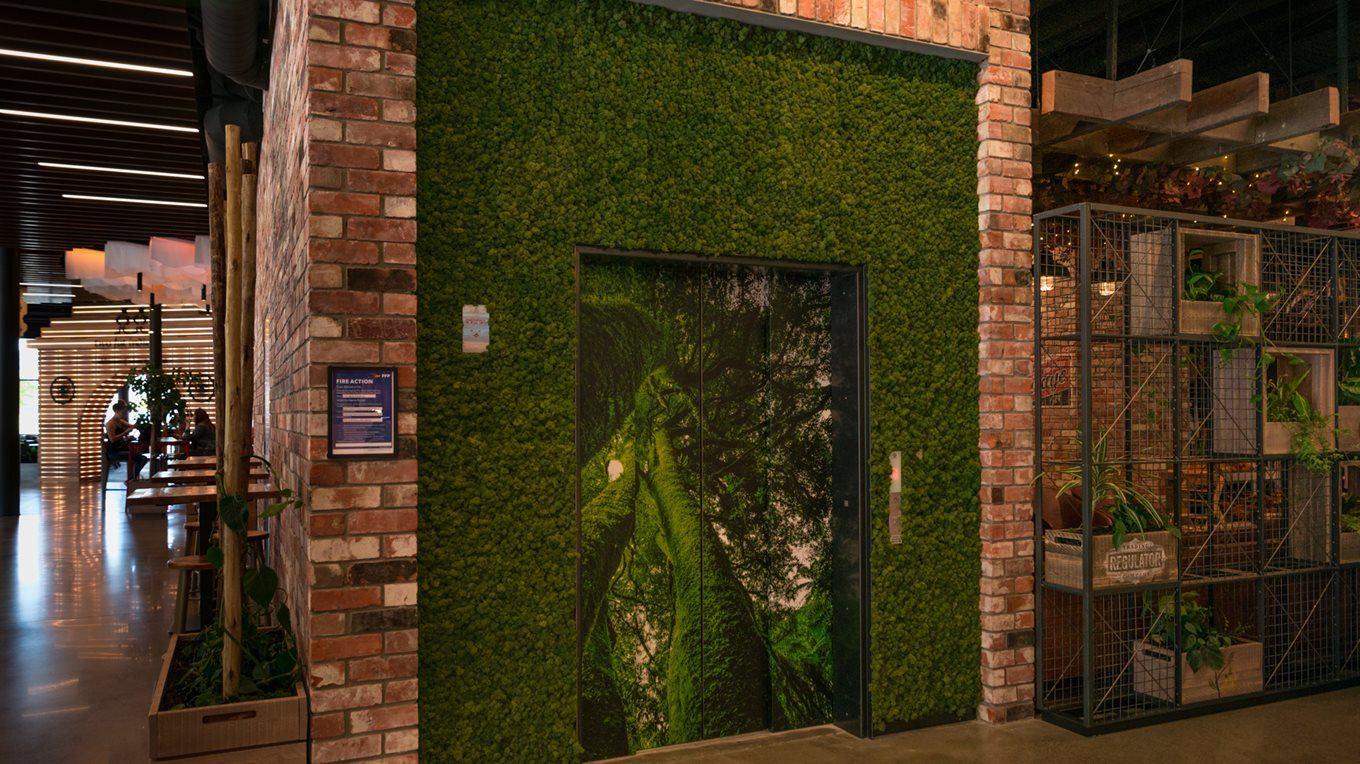 green wall fit out christchurch