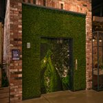 green wall fit out christchurch thumbnail