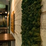 moss wall hospitality fit out christchurch thumbnail