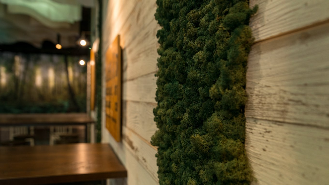 moss wall hospitality fit out christchurch